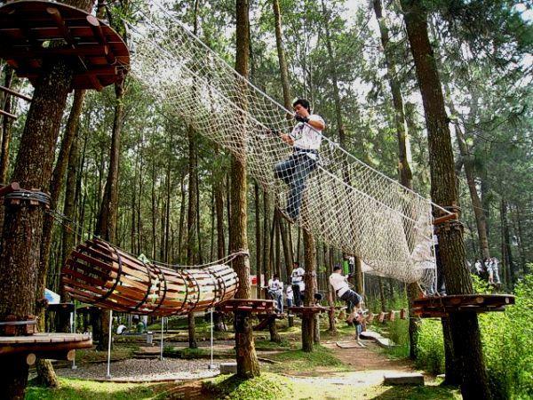 fasilitas wisata alam kopeng treetop adventure park
