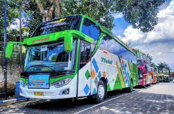 saungbus.com sewa bus pariwisata
