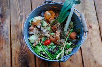cara mengolah sampah organik